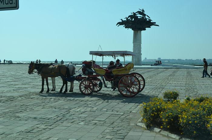Turkey 150_opt