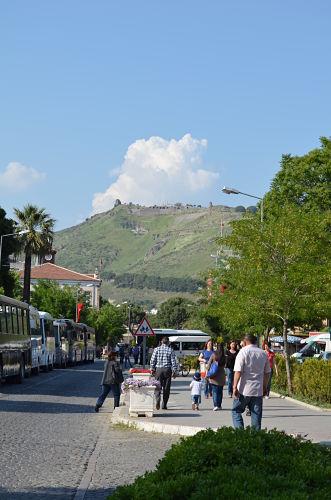 Turkey 667_opt